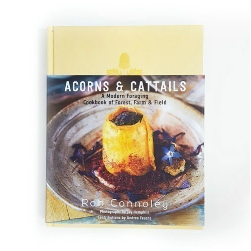 ACORNS & CATTAILS Thumbnail